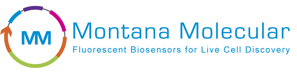 Montana Molecular_horizontal_logo